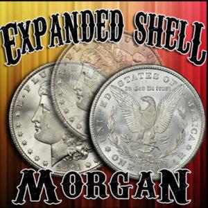 Morgan Shell