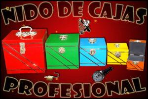 Nido de Cajas Profesional